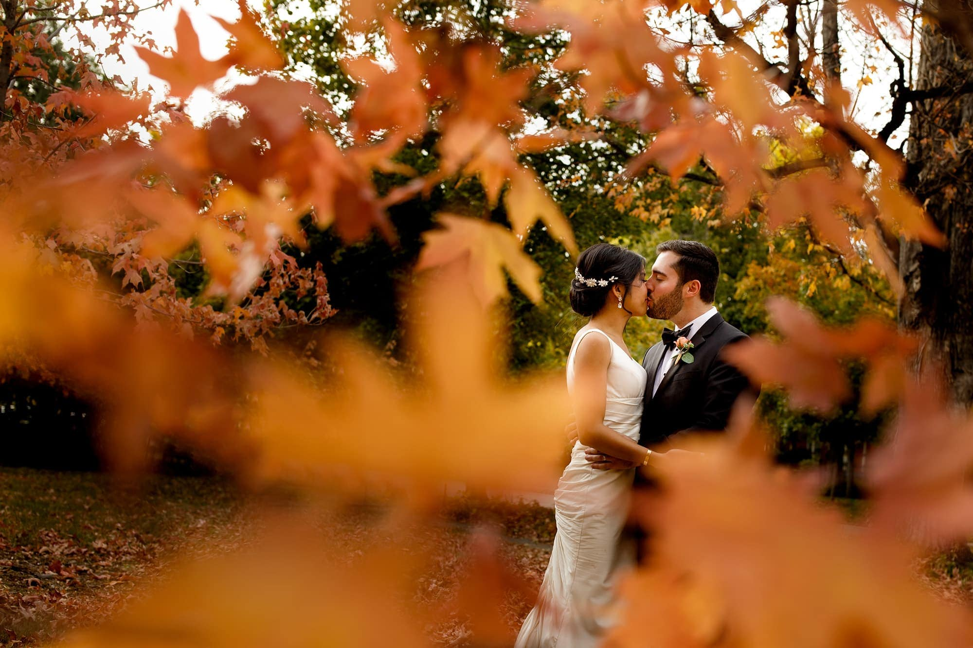 The couple share a kiss surrounded by maple leaves in Boulder, Colorado