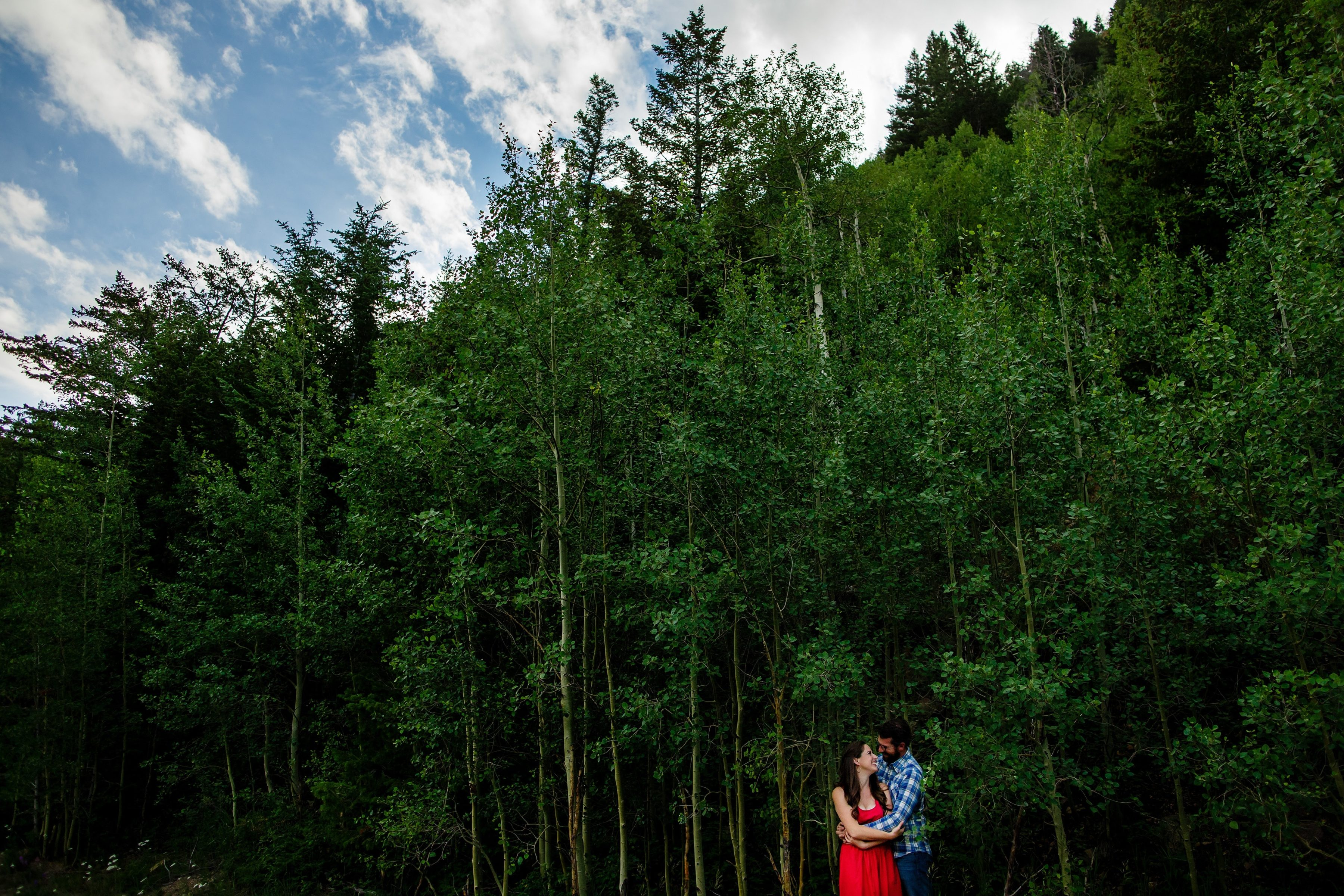 Daniel and Mallory embrace amongst an aspen grove on Guanella Pass in Colorado during their engagement session