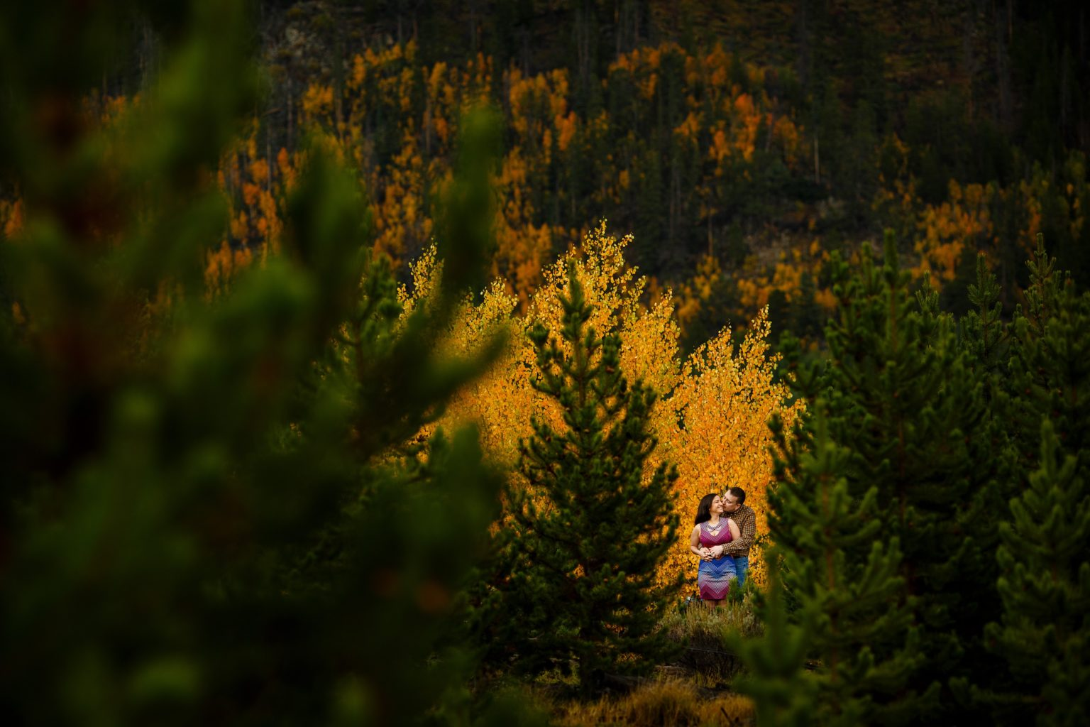 Joseph kisses Shabnam in front of a grove of yellow aspen trees during their Breckenridge fall colors engagement photos on Gold Hill