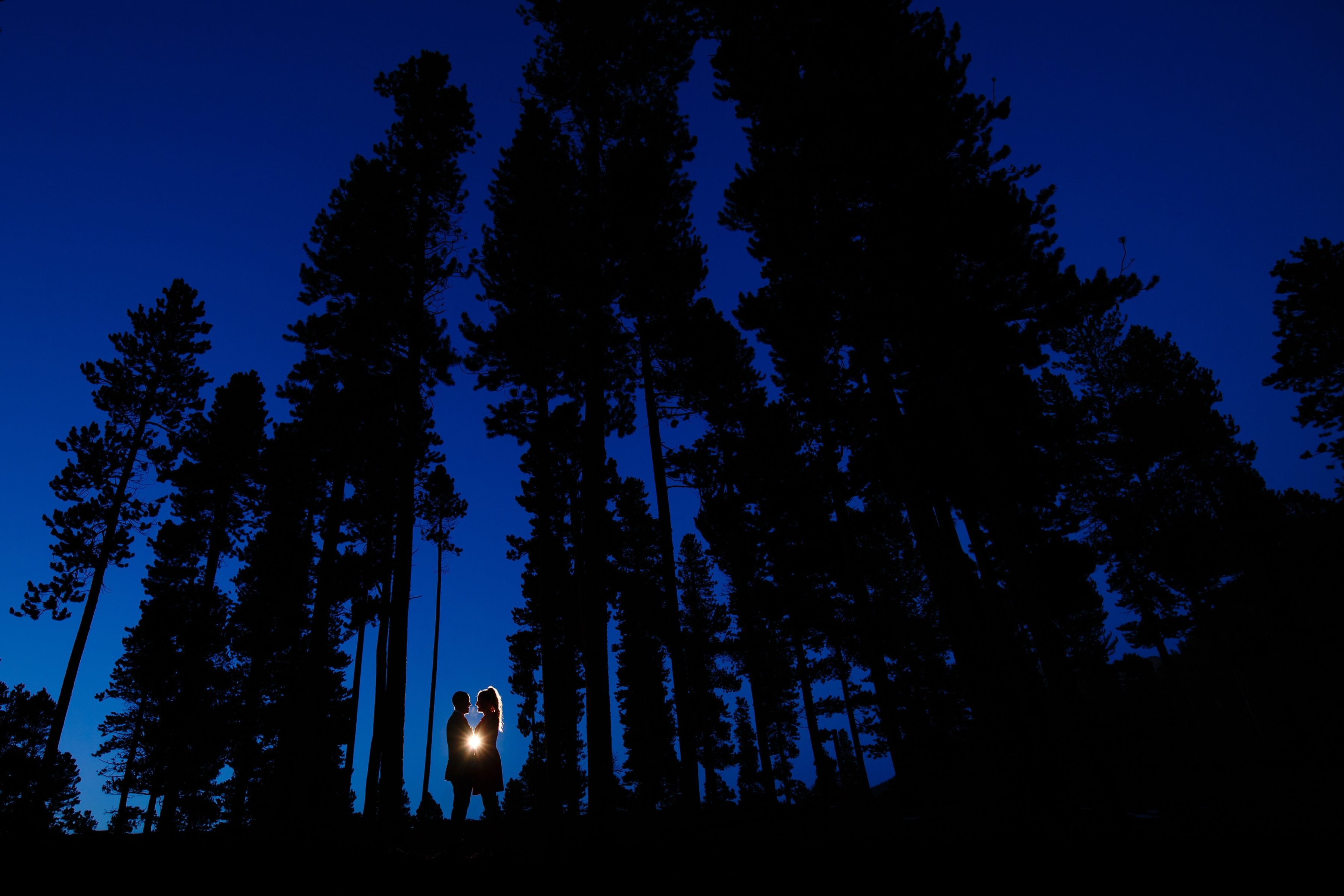 Adam and Paige are illuminated at night between pine trees  during their Golden Gate Canyon State Park engagement
