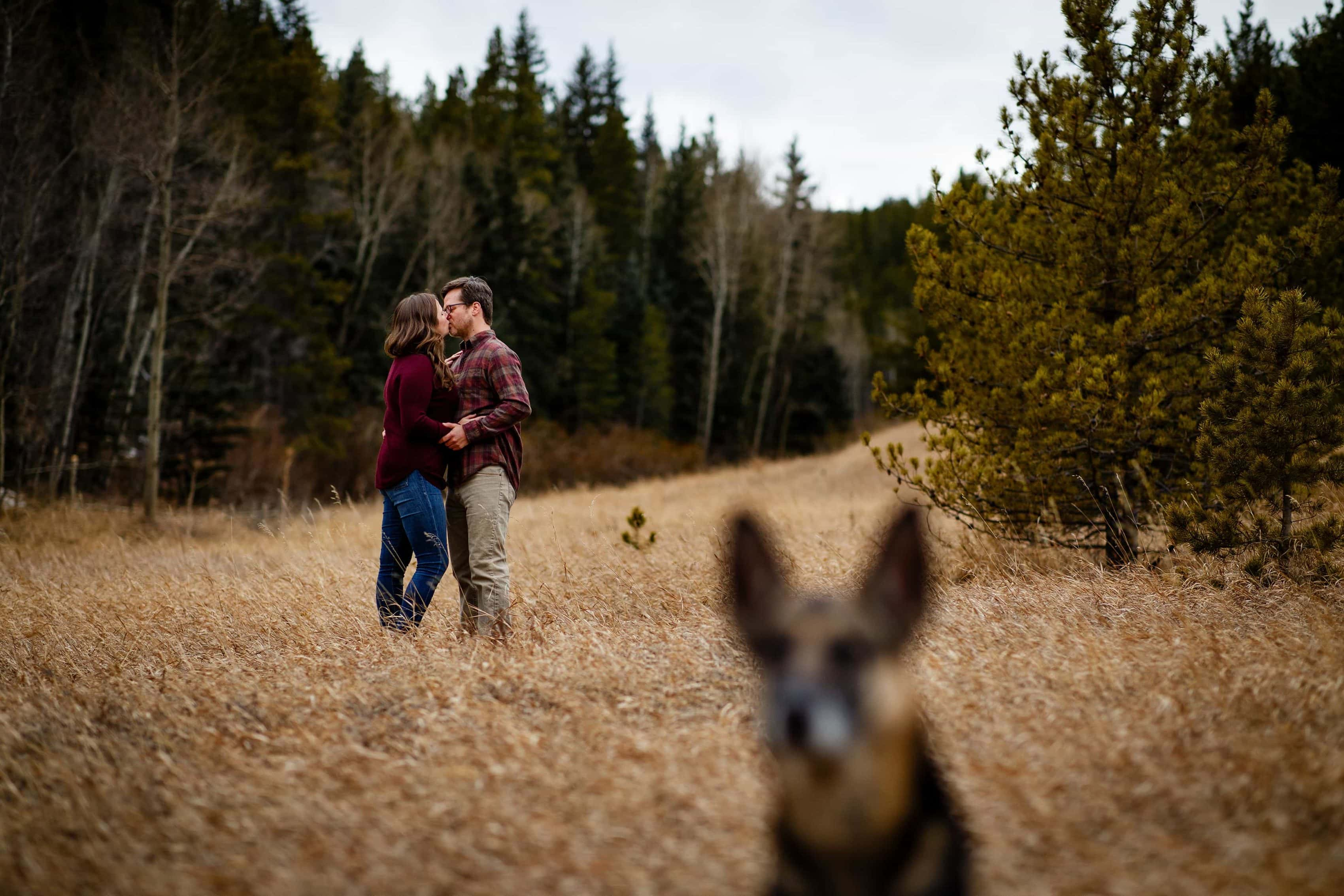 Kate and Brian share a kiss near Kriley's pond as their dog Koda keeps a lookout during their Spring Golden Gate Canyon engagement