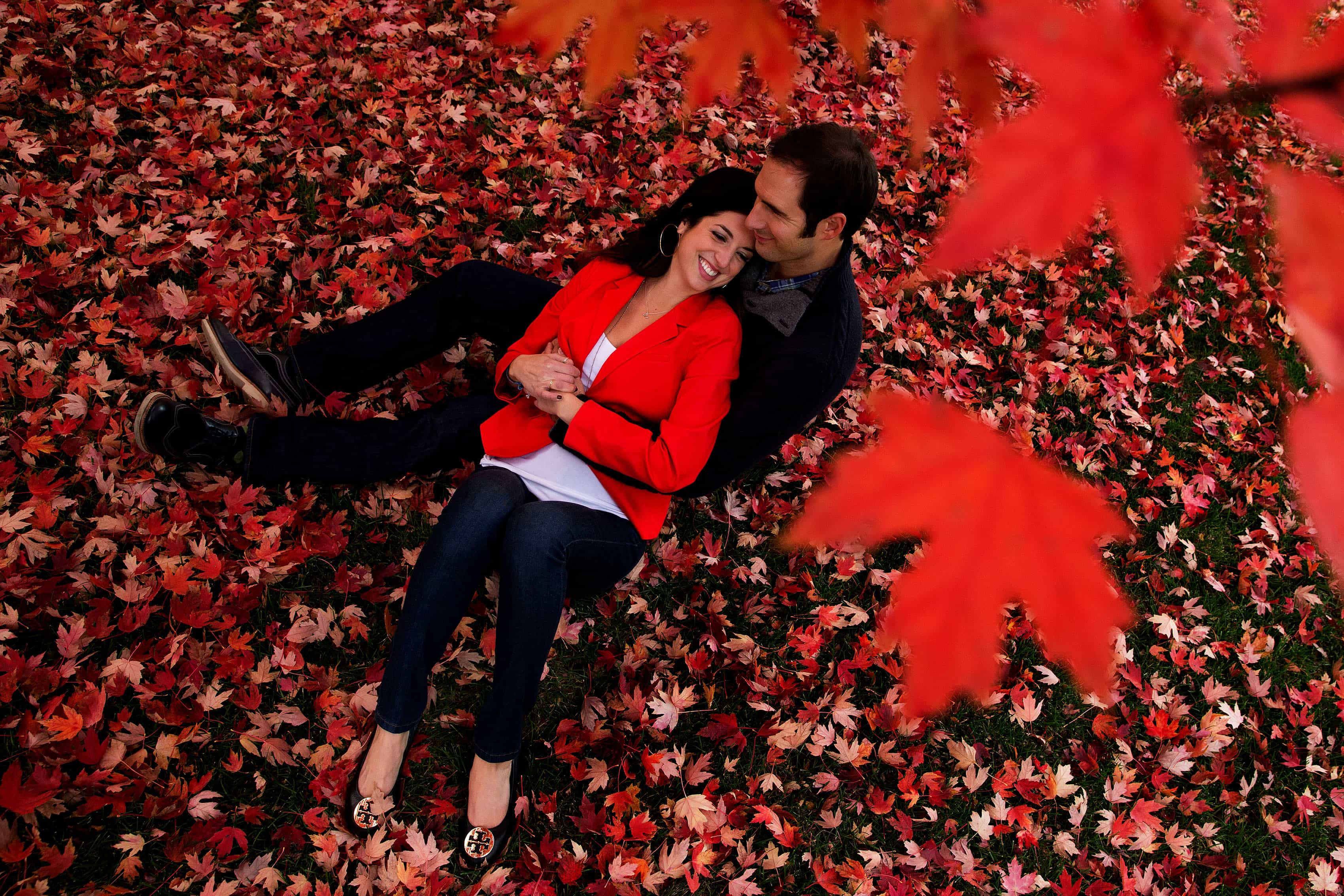 Denver fall colors engagement with red maple trees