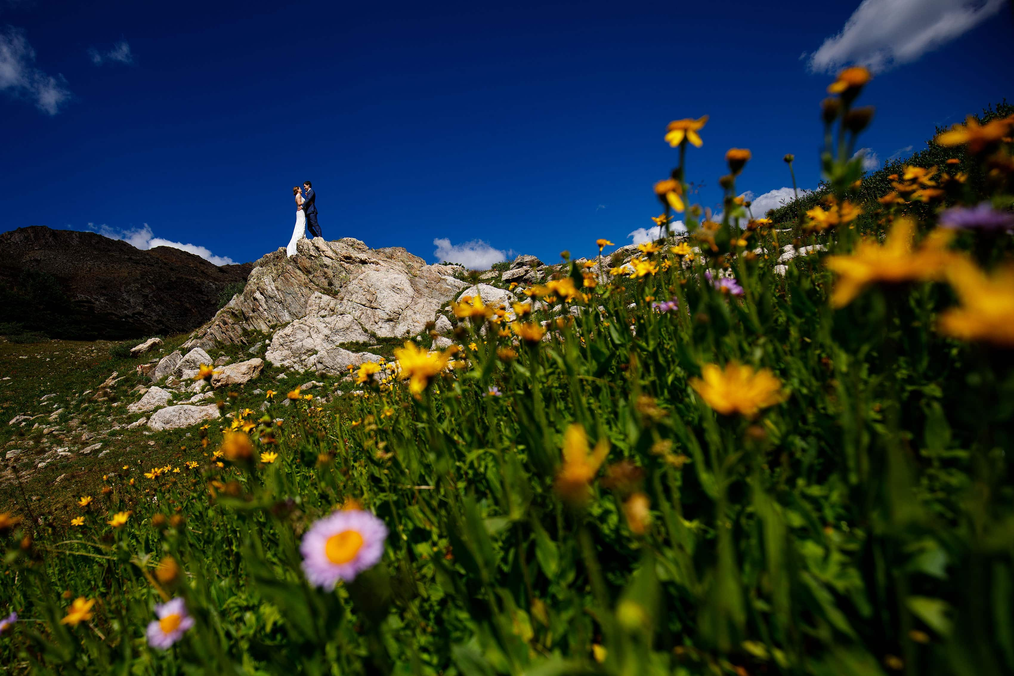 Wildflowers in full bloom as the bride and groom stand on a rock on Loveland Pass